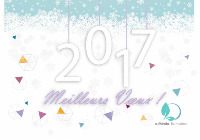 voeux 2017 aplatissements